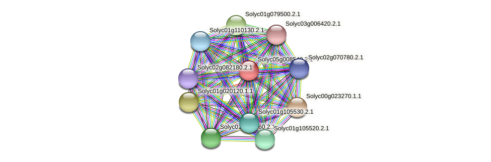 Solyc05g008540.2.1 protein (Solanum lycopersicum) - STRING interaction network