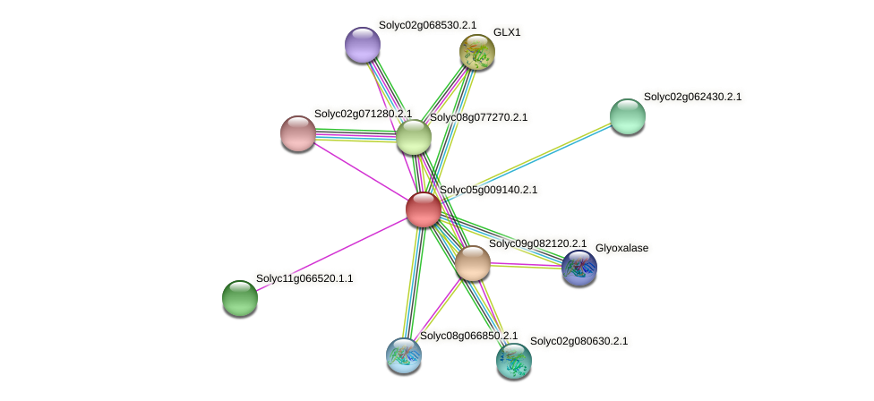 Solyc05g009140.2.1 protein (Solanum lycopersicum) - STRING interaction network