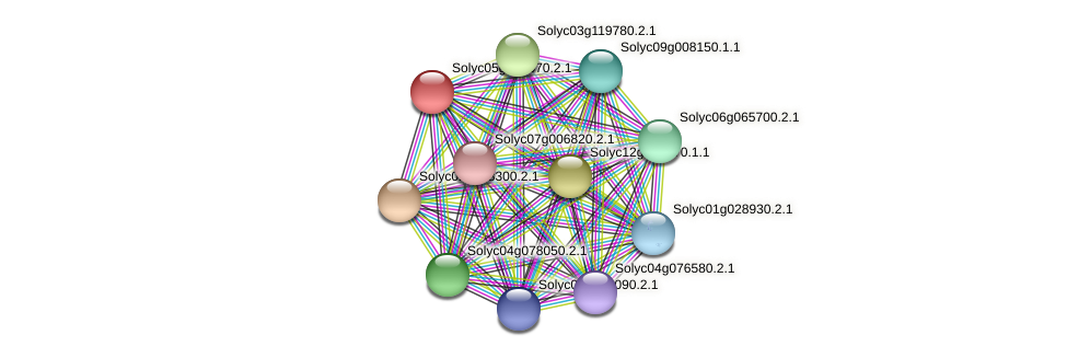 Solyc05g010570.2.1 protein (Solanum lycopersicum) - STRING interaction network