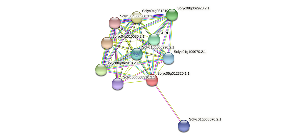 Solyc05g012320.1.1 protein (Solanum lycopersicum) - STRING interaction network