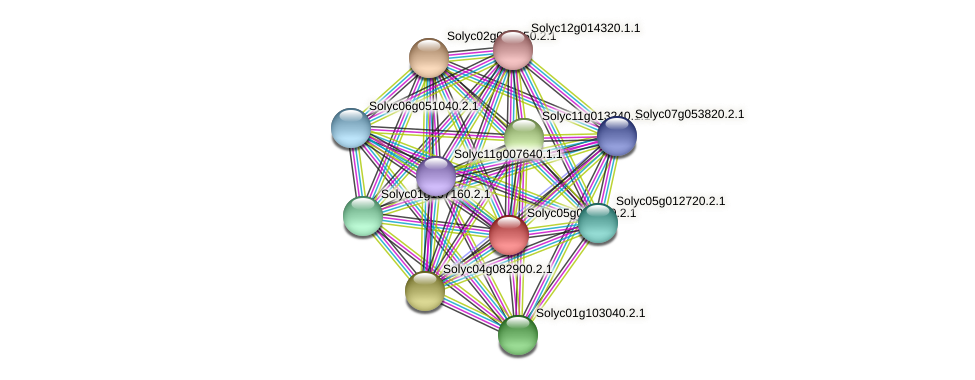 Solyc05g014370.2.1 protein (Solanum lycopersicum) - STRING interaction network