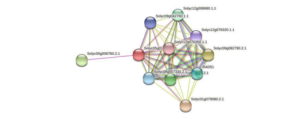 Solyc05g015380.2.1 protein (Solanum lycopersicum) - STRING interaction network