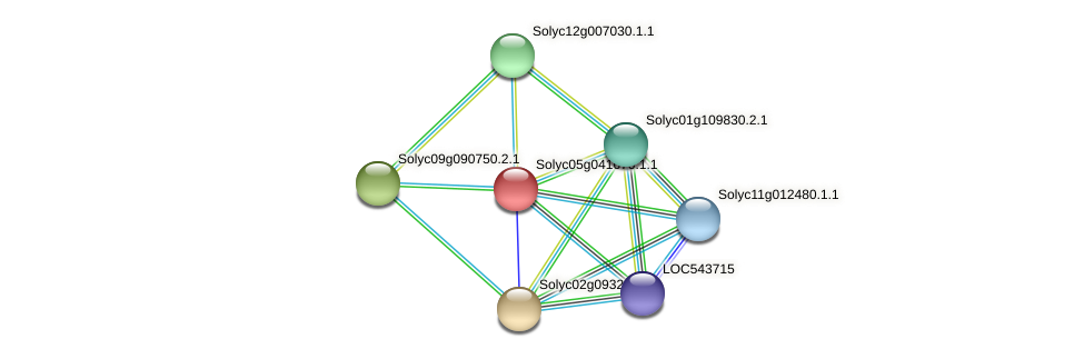 Solyc05g041670.1.1 protein (Solanum lycopersicum) - STRING interaction network