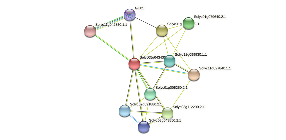 Solyc05g043430.2.1 protein (Solanum lycopersicum) - STRING interaction network