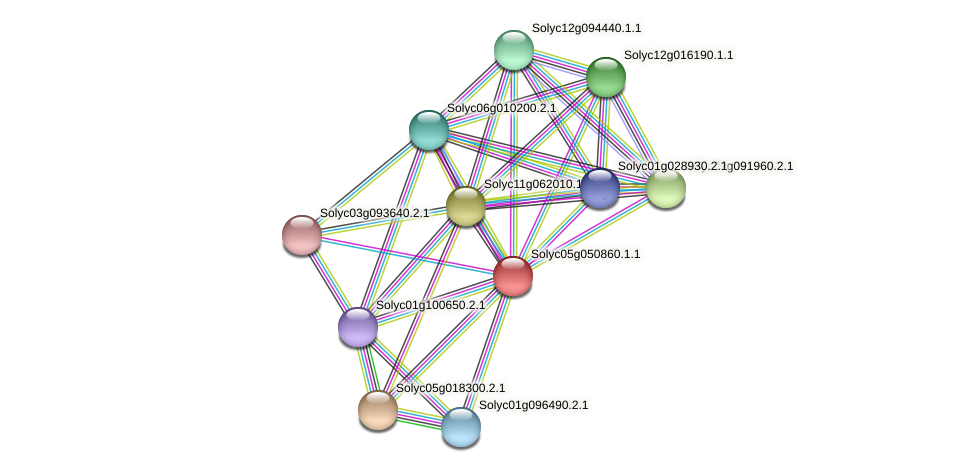 Solyc05g050860.1.1 protein (Solanum lycopersicum) - STRING interaction network