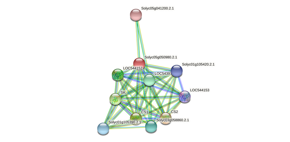Solyc05g050980.2.1 protein (Solanum lycopersicum) - STRING interaction network