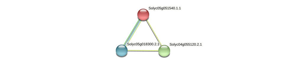Solyc05g051540.1.1 protein (Solanum lycopersicum) - STRING interaction network