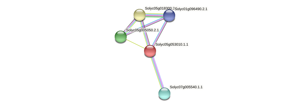 Solyc05g053010.1.1 protein (Solanum lycopersicum) - STRING interaction network