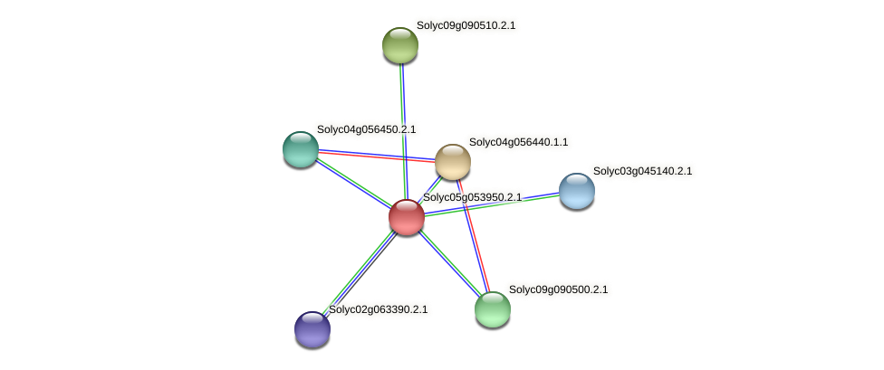Solyc05g053950.2.1 protein (Solanum lycopersicum) - STRING interaction network
