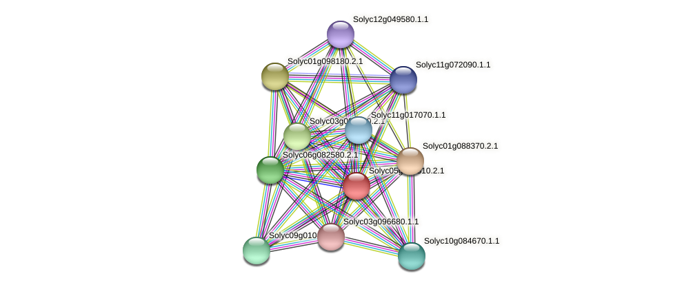 Solyc05g054310.2.1 protein (Solanum lycopersicum) - STRING interaction network