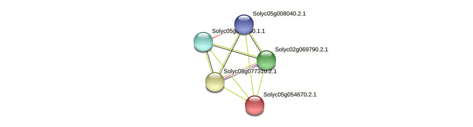 Solyc05g054670.2.1 protein (Solanum lycopersicum) - STRING interaction network
