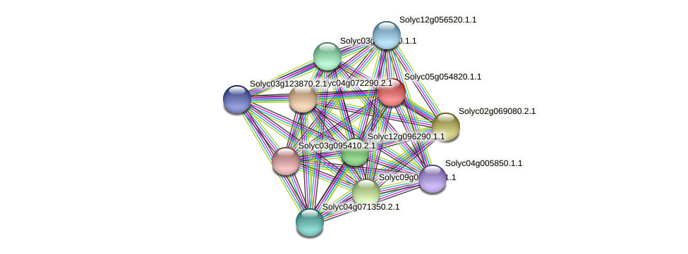 Solyc05g054820.1.1 protein (Solanum lycopersicum) - STRING interaction network