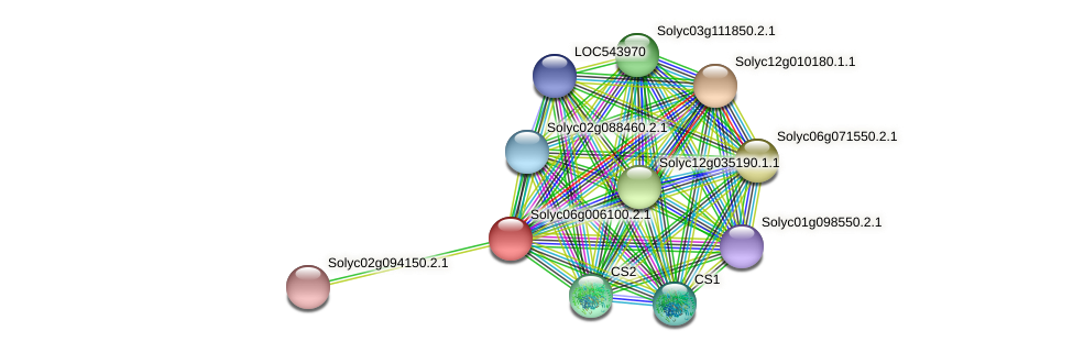 Solyc06g006100.2.1 protein (Solanum lycopersicum) - STRING interaction network