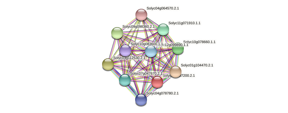 101267411 protein (Solanum lycopersicum) - STRING interaction network