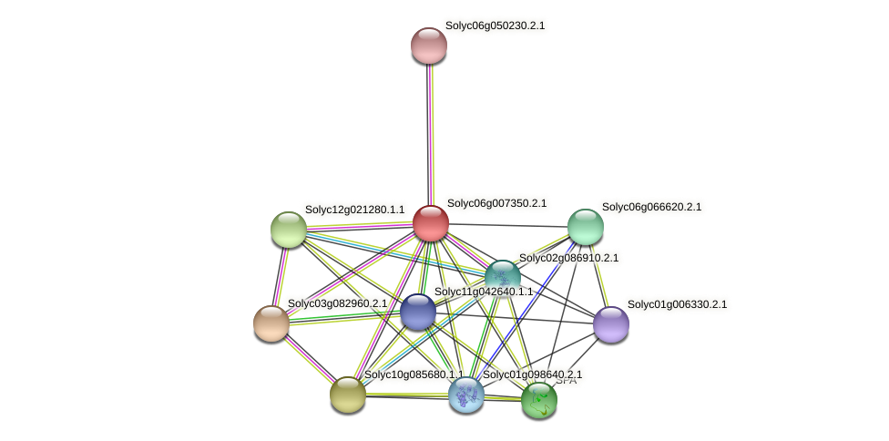 Solyc06g007350.2.1 protein (Solanum lycopersicum) - STRING interaction network