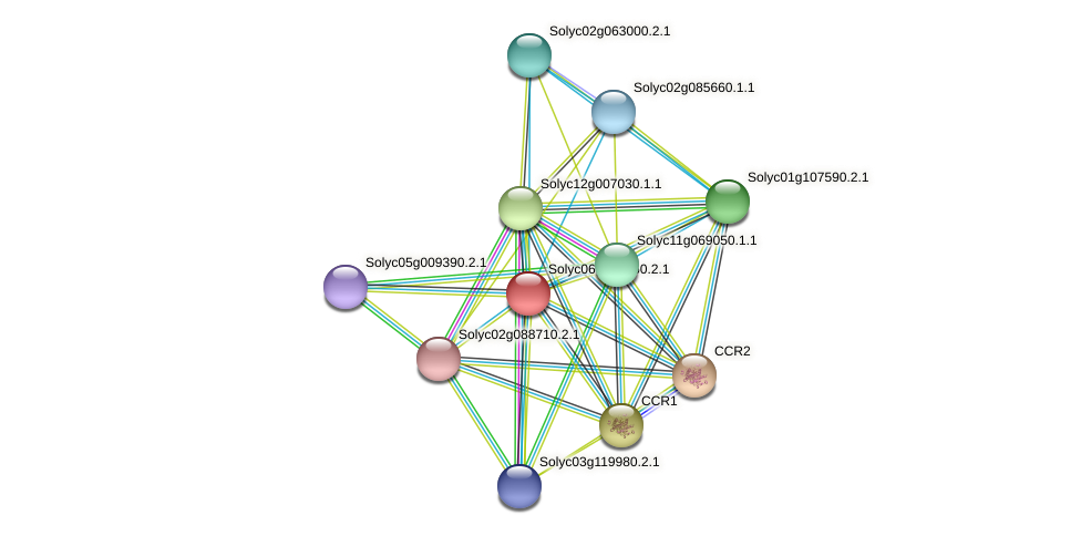Solyc06g007960.2.1 protein (Solanum lycopersicum) - STRING interaction network