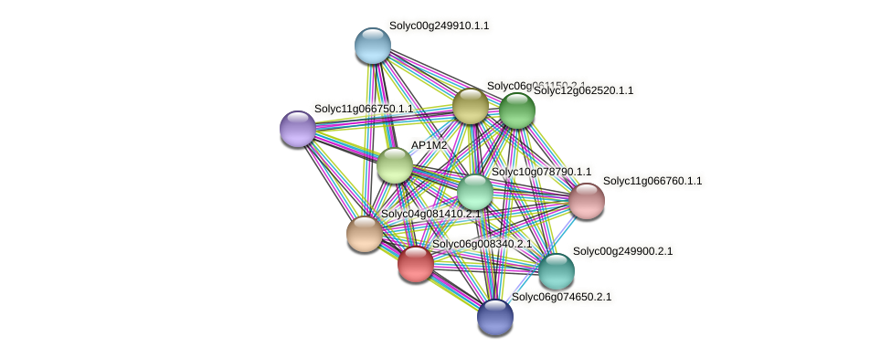 101267896 protein (Solanum lycopersicum) - STRING interaction network