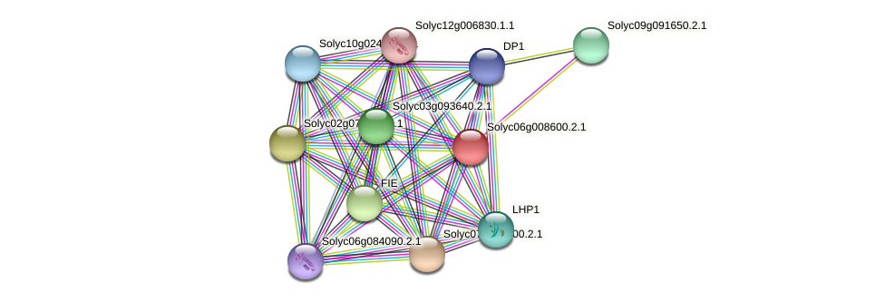 Solyc06g008600.2.1 protein (Solanum lycopersicum) - STRING interaction network