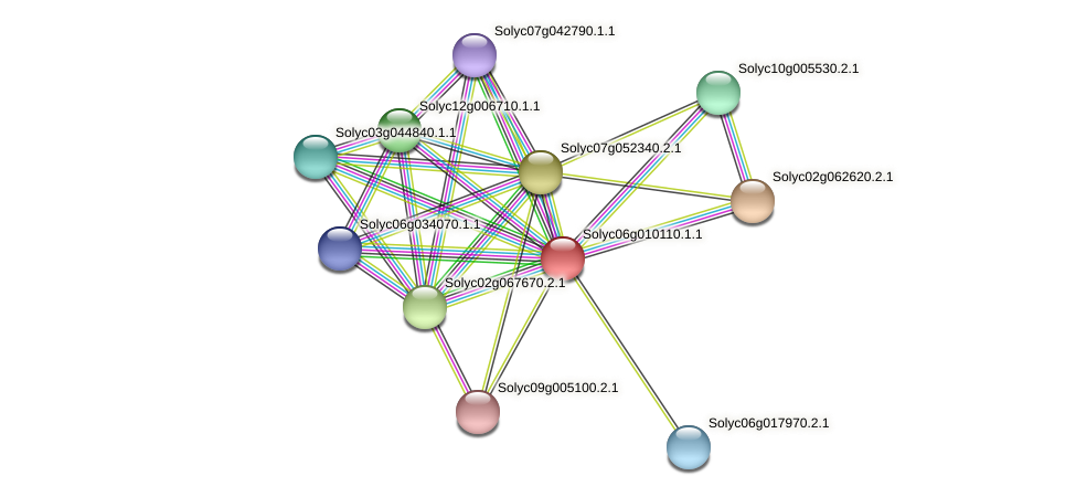 Solyc06g010110.1.1 protein (Solanum lycopersicum) - STRING interaction network