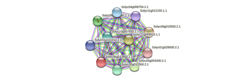 Solyc06g033900.1.1 protein (Solanum lycopersicum) - STRING interaction network