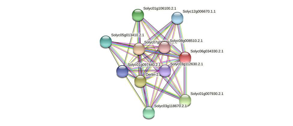 Solyc06g034330.2.1 protein (Solanum lycopersicum) - STRING interaction network