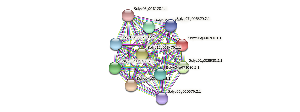 Solyc06g036200.1.1 protein (Solanum lycopersicum) - STRING interaction network