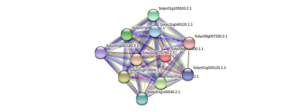 Solyc06g050200.1.1 protein (Solanum lycopersicum) - STRING interaction network