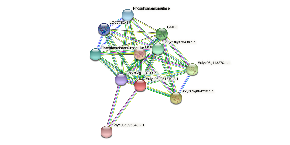 Solyc06g051270.2.1 protein (Solanum lycopersicum) - STRING interaction network