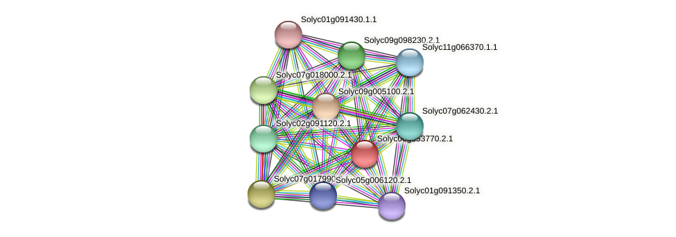 Solyc06g053770.2.1 protein (Solanum lycopersicum) - STRING interaction network