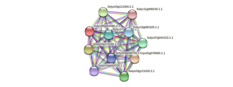 Solyc06g054080.2.1 protein (Solanum lycopersicum) - STRING interaction network