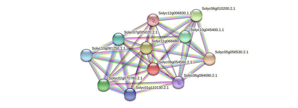 Solyc06g054560.2.1 protein (Solanum lycopersicum) - STRING interaction network