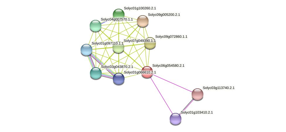 Solyc06g054580.2.1 protein (Solanum lycopersicum) - STRING interaction network