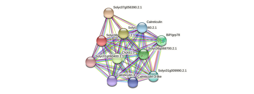 Solyc06g060290.2.1 protein (Solanum lycopersicum) - STRING interaction network