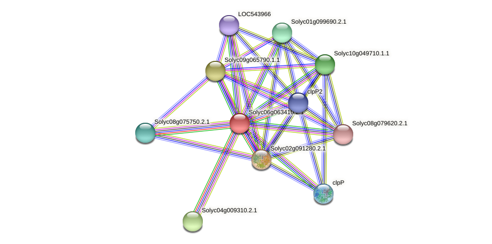 Solyc06g063410.2.1 protein (Solanum lycopersicum) - STRING interaction network