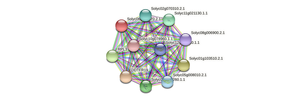 Solyc06g064470.2.1 protein (Solanum lycopersicum) - STRING interaction network