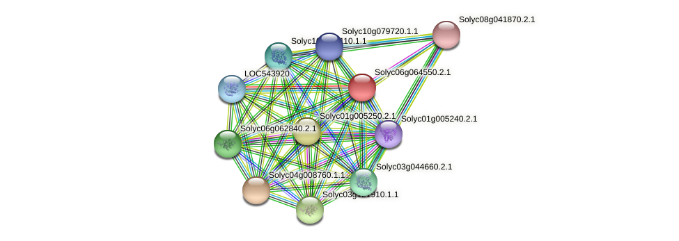 Solyc06g064550.2.1 protein (Solanum lycopersicum) - STRING interaction network