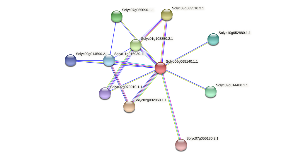 Solyc06g065140.1.1 protein (Solanum lycopersicum) - STRING interaction network