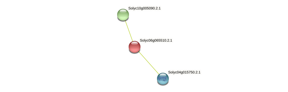 Solyc06g065510.2.1 protein (Solanum lycopersicum) - STRING interaction network