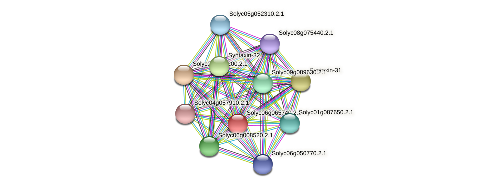 Solyc06g065740.2.1 protein (Solanum lycopersicum) - STRING interaction network