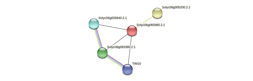 Solyc06g065980.2.1 protein (Solanum lycopersicum) - STRING interaction network
