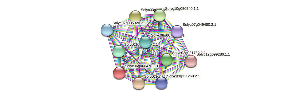 Solyc06g066470.2.1 protein (Solanum lycopersicum) - STRING interaction network