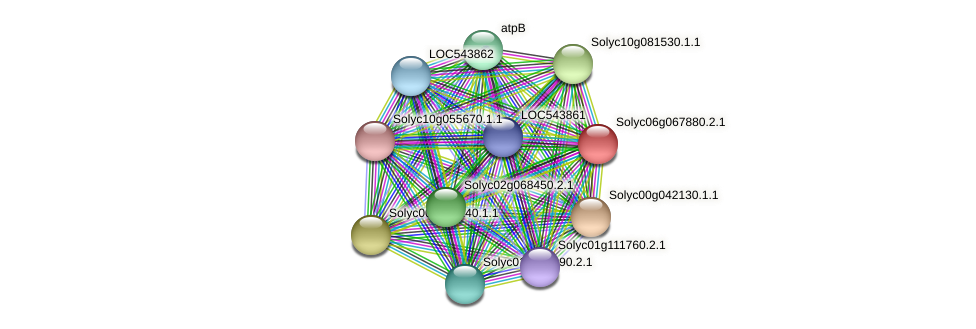 Solyc06g067880.2.1 protein (Solanum lycopersicum) - STRING interaction network