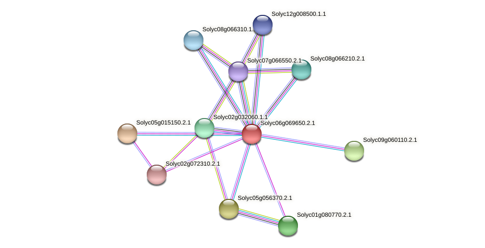 Solyc06g069650.2.1 protein (Solanum lycopersicum) - STRING interaction network