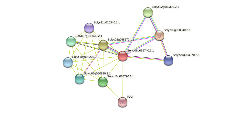 Solyc06g069740.1.1 protein (Solanum lycopersicum) - STRING interaction network
