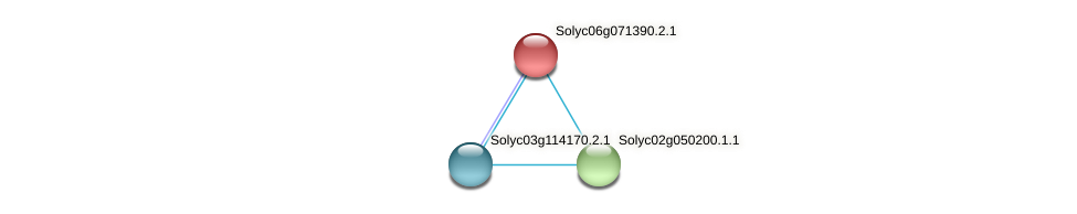 Solyc06g071390.2.1 protein (Solanum lycopersicum) - STRING interaction network