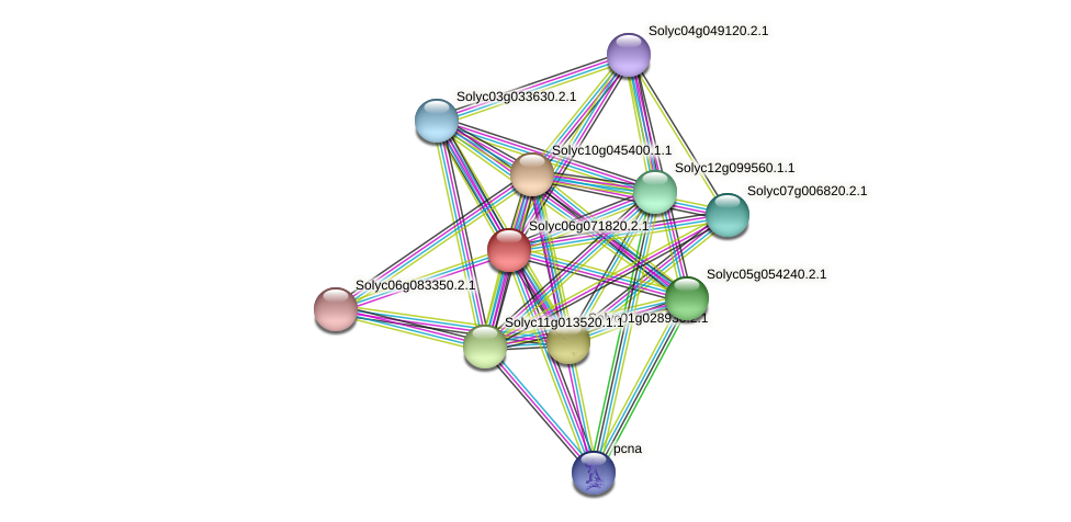 Solyc06g071820.2.1 protein (Solanum lycopersicum) - STRING interaction network