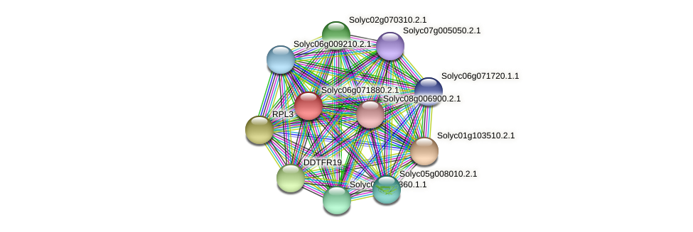 Solyc06g071880.2.1 protein (Solanum lycopersicum) - STRING interaction network