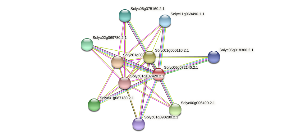 Solyc06g072140.2.1 protein (Solanum lycopersicum) - STRING interaction network