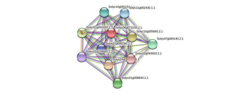 Solyc06g073150.2.1 protein (Solanum lycopersicum) - STRING interaction network