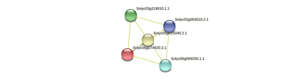 Solyc06g074620.2.1 protein (Solanum lycopersicum) - STRING interaction network